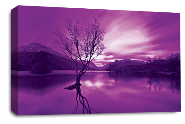 Purple Cream Landscape lake mountains canvas wall art picture print