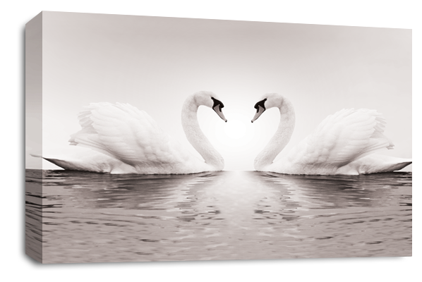 Grey Love Heart Kissing Swans Canvas Wall Art Picture Print ...
