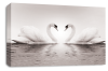 Grey Love heart kissing swans canvas wall art picture print