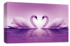 Light Purple Love heart kissing swans canvas wall art picture print