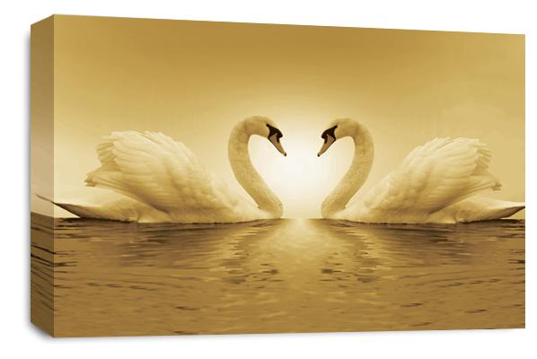 Kissing Love Swans Canvas Wall Art single panel