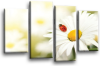 Teal white orange daisy flower floral canvas wall art picture print multi pane