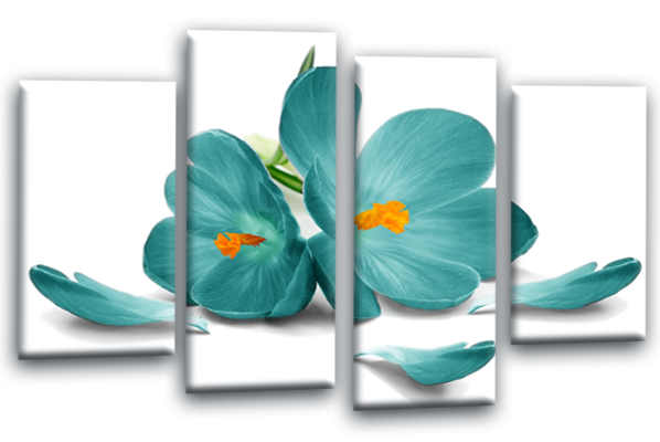 Teal white orange orchid flower floral canvas wall art picture print multi panel