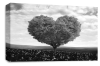 Grey Black White Love Heart Tree canvas wall art picture print