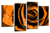 Orange Open rose canvas wall art picture print multi panel