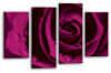 Purple Open rose canvas wall art picture print multi panel