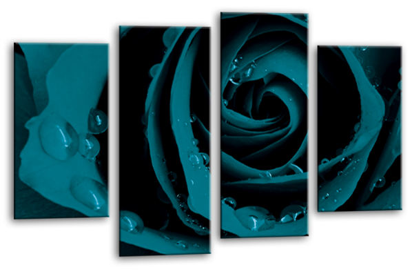 ... Teal Open Rose Canvas Wall Art Picture Print Multi Panel